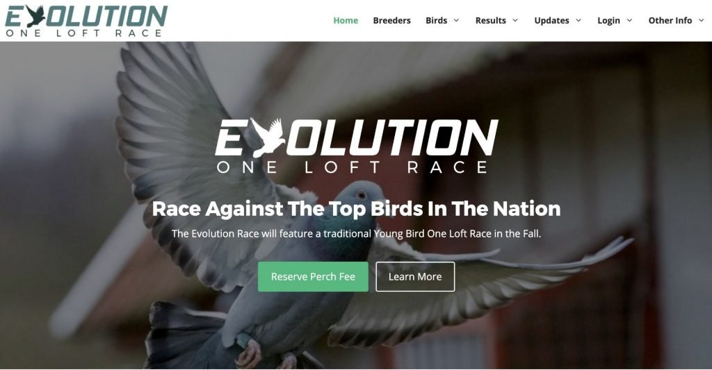 Evolution One Loft Race Project