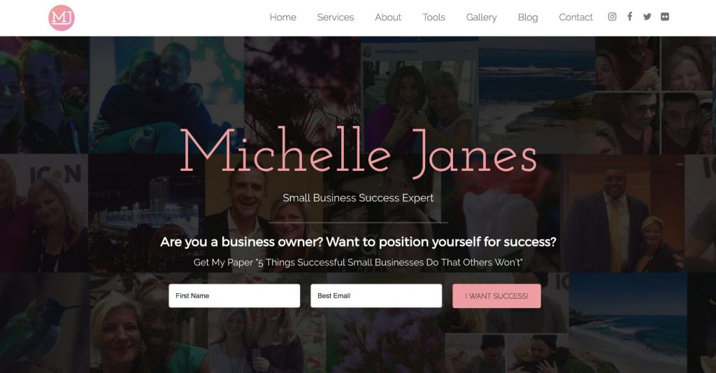 Michelle Janes Project